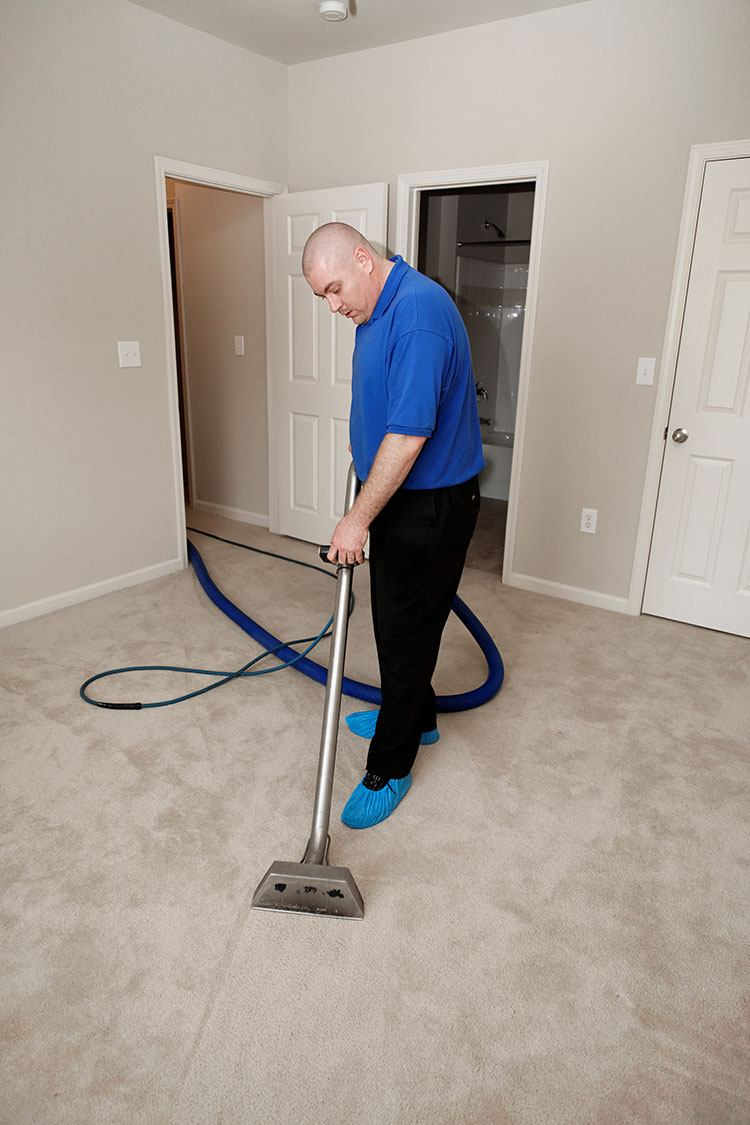 Affordable Carpet Cleaning Ocala Fl Carpet Vidalondon