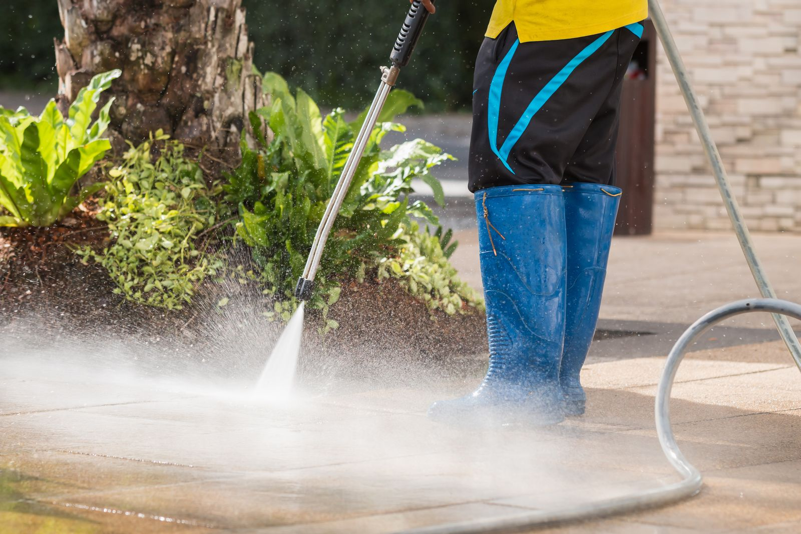Forest Hill Power Washing